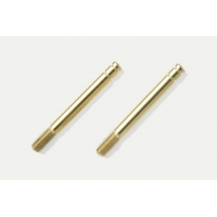 TRF Damper Titanium Coated Piston Rod (2) Featured Photo